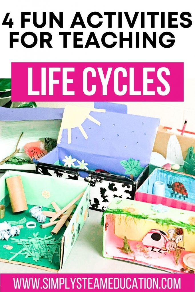 teaching life cycles